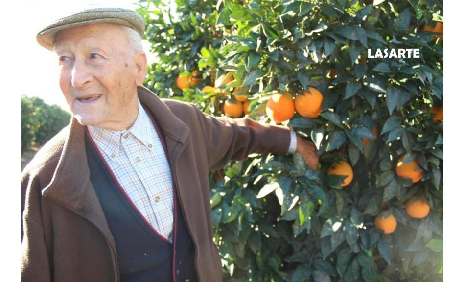 Don Marino: Un agricultor de más de 4 décadas cultivando naranjas en el Valle del Guadalquivir.